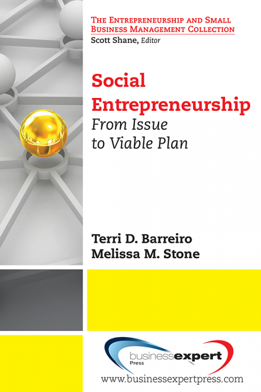 Social Entrepreneurship: From Issue to Viable Plan