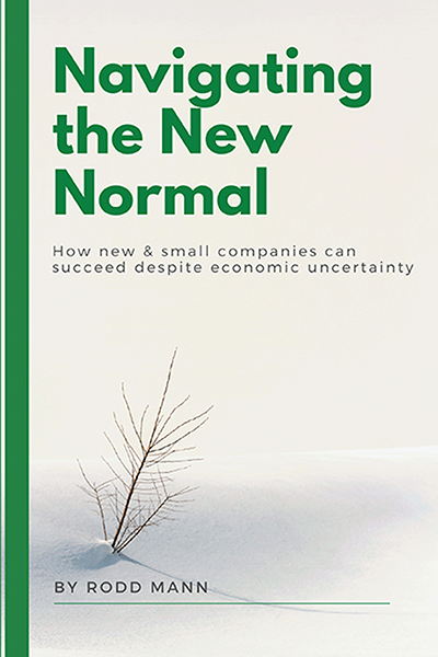 Navigating the New Normal: How New & Small Companies Can Succeed Despite Economic Uncertainty