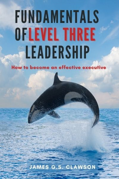 Fundamentals of Level Three Leadership: How to Become an Effective Executive